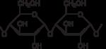 Amylose2